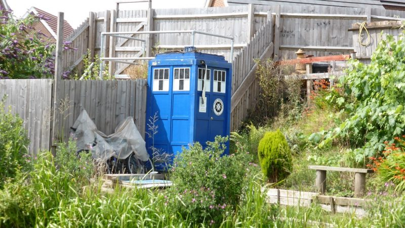 Many unusual things to be seen on the canal